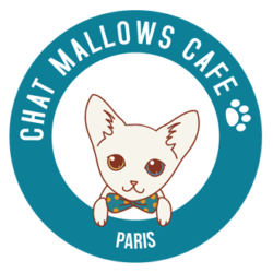 Réservations Chat Mallows Café